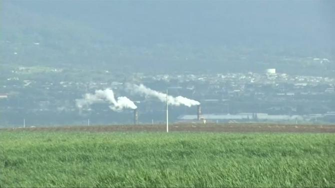 Pacific trade pact bittersweet for cane growers