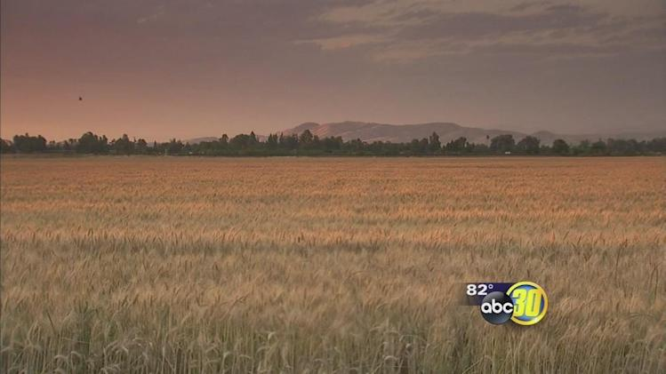 Drought impacts farmland purchases