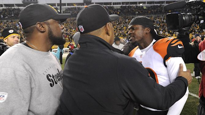 Pittsburgh Steelers coach Mike Tomlin, left, and Cincinnati Bengals free safety Reggie Nelson exchange words Cincinnati Bengals coach Marvin Lewis gets between them after an NFL football game, Sunday, Dec. 28, 2014, in Pittsburgh. The Steelers won 27-17 to win the AFC North. (AP Photo/Don Wright)