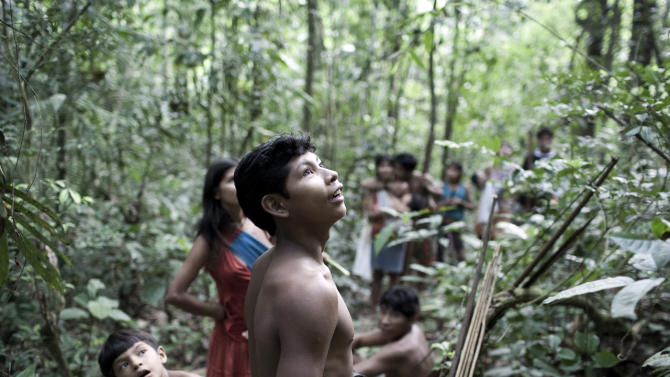 In this Aug. 2010 photo released in 2012 by Survival International, Awa Indians stand in a forest in Maranhao state, Brazil.  For generations, the Awa lived far away from the rest of humanity, following the seasons' rhythms in the lush Brazilian Amazon rainforest. Then the rest of the world found the Awa. Watchdog groups say conflict is inevitable as government-backed projects such as hydroelectric dams and roads bring thousands of settlers to remote areas. Two bills now working their way through Brazil's Congress would further open indigenous territory to development and potentially weaken tribes' hold on their land. (AP Photo/Domenico Pugliese, Survival International)