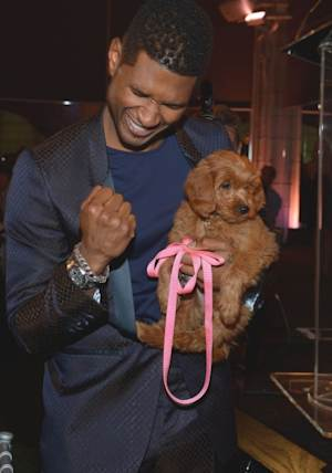 Usher Raymond IV attends the second annual Pencils of Promise Gala at Guastavino's in New York City on October 25, 2012  -- Getty Images