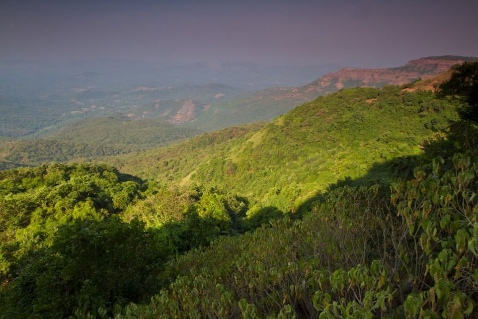 Agumbe Western Ghats