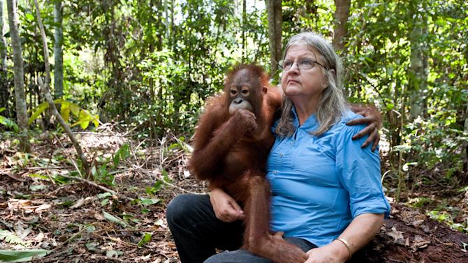 """In this publicity image released by Warner Bros. Entertainment Inc., an orphan orangutan cuddles up with Dr. Biruté Mary Galdikas  during the filming of,""""Born To Be Wild 3D.""""  The 40-minute documentary, narrated by Oscar winning actor Morgan Freeman, opens Friday, April 8, 2011, in IMAX theaters across the U.S. (AP Photo/Warner Bros. Entertainment Inc., Drew Fellman)"""