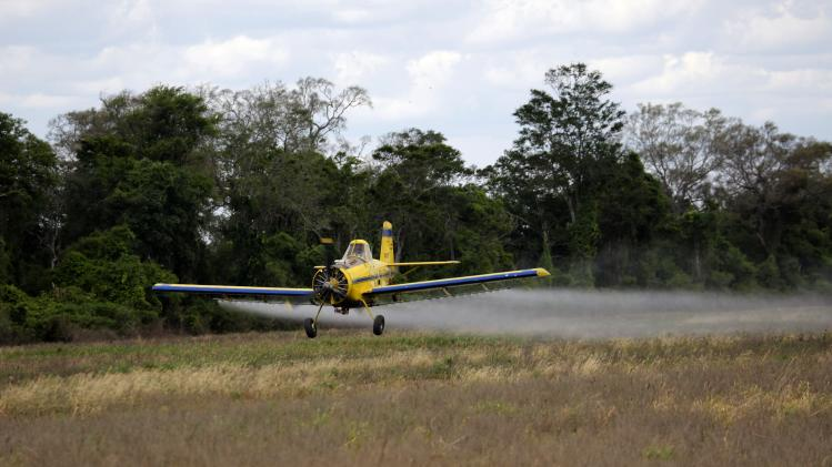 An aircraft sprays pesticide on soy bean crop in Cuatro Canadas