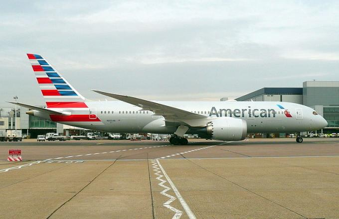 American Airlines Flight Forced to Make Emergency Landing After Pilot Suddenly Dies
