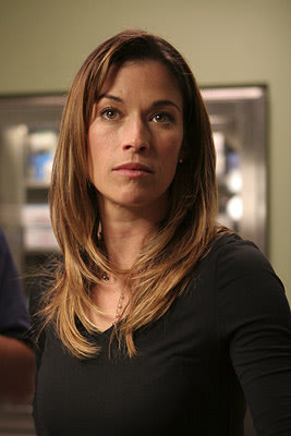 Brooke Langton as Terri Monk on USA Network
