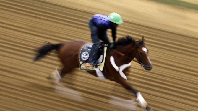 Goldencents, with jockey Kevin Krigger aboard, gallops at Pimlico Race Course in Baltimore, Wednesday, May 15, 2013. The Preakness Stakes horse race is scheduled to take place May 18. (AP Photo/Patrick Semansky)