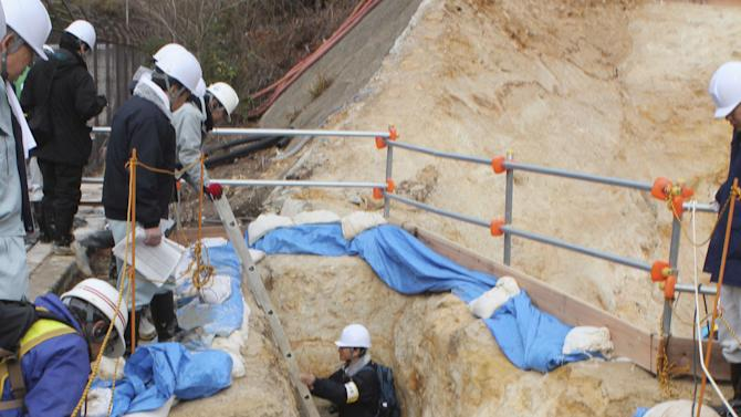 Panel: Fault under Japan nuke plant may be active