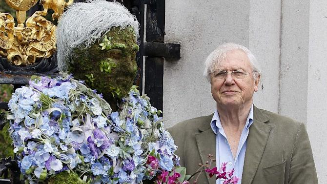 """FILE - In this Thursday, May 17, 2012 file photo British television personality Sir David Attenborough stands with a floral sculpture of himself at Kew Gardens in London. The BBC is hoping to revive a simpler time with """"Tweet of the Day"""" _ an early-morning radio program dedicated to British birdsong. Veteran naturalist David Attenborough will host the 90-second show, which begins in May 2013, which will feature the song of a different bird each weekday, along with background on the species' behavior and habits. (AP Photo/Kirsty Wigglesworth, File)"""