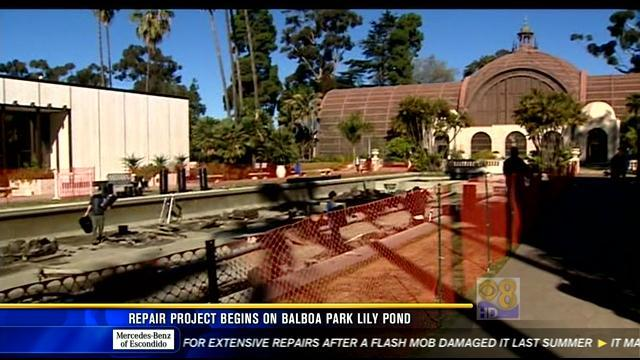 Repair project begins at Balboa Park lily pond