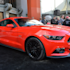 2015 Ford Mustang: Obsessively covered
