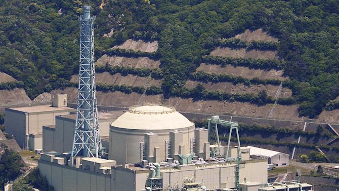 Japan watchdog to halt test reactor over safety