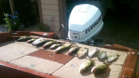 Fisherman gets busted after bragging about big haul
