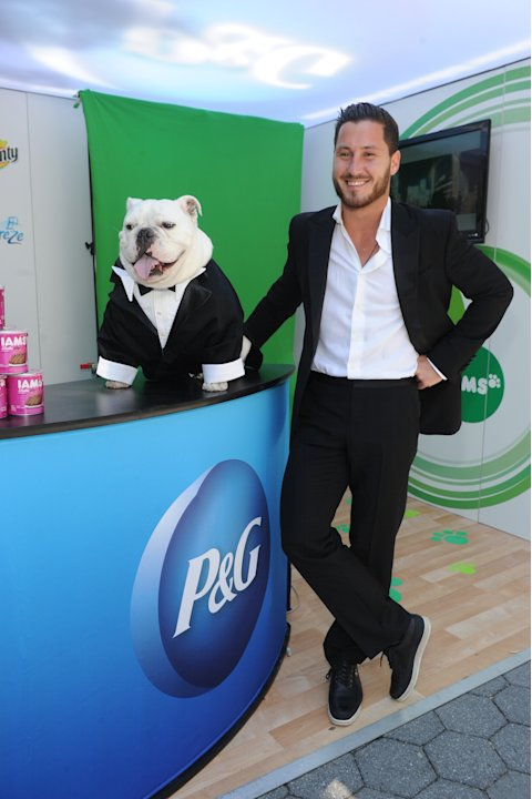 Val Chmerkovskiy of Dancing with the Stars, and his English Bulldog, Sir Sleep, join Procter & Gamble in New York on Wednesday, June 19, 2013, to celebrate The #EverydayEffect campaign, which aims to