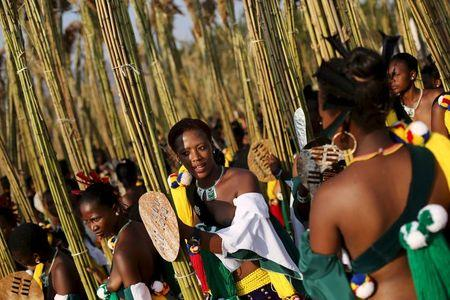 Maidens look on while preparing to deliver the reeds at Ludzidzini royal palace during the annual Reed Dance in Swaziland