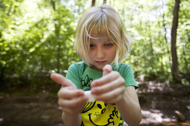 Lori Anne Madison, 6, of Lake Ridge, Va., looks at a snail she collected while playing with friends in McLean, Va., on Friday, May 11, 2012. Lori Anne is the youngest contestant in the 2012 National Spelling Bee. (AP Photo/Jacquelyn Martin)