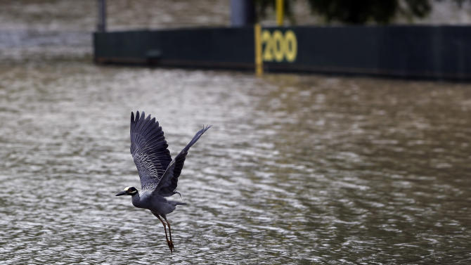 A heron takes flight over a flooded baseball field, Sunday, May 26, 2013, in San Antonio. Heavy rains and flooding are being blamed for at least two deaths in San Antonio. (AP Photo/Eric Gay)
