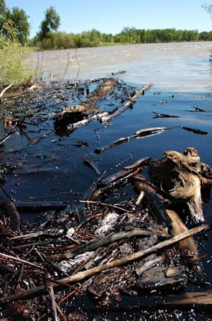 FILE - This July 2, 2011 file photo shows oil from a ruptured ExxonMobil pipeline on the Yellowstone River and along its banks near Laurel, Mont. A federal investigation says Exxon Mobil's delayed response to a pipeline break beneath Montana's Yellowstone River made the spill far worse than it otherwise would have been.    (AP Photo/Matthew Brown, File)
