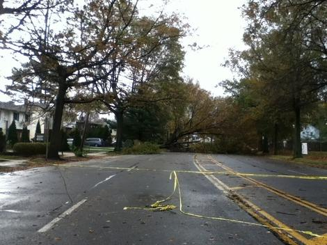 Wind from Hurricane Sandy Knocks Over Several Trees in East Meadow, New York