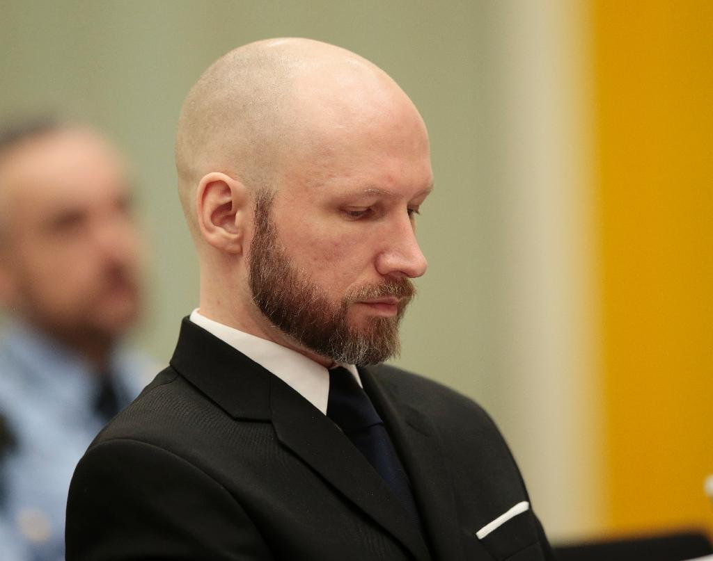 Norway says Breivik a VIP inmate with 'cosy' conditions