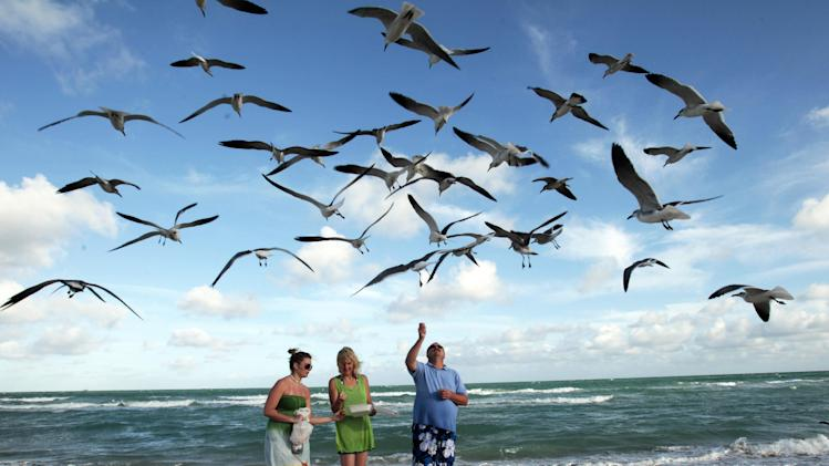 FILE - In this Sunday, Dec. 11, 2011 file photo, Preslee Rakes, left, her mother Tina Rakes, center, and Brad Cunningham, right, all from Kansas, feed seagulls during a visit to the South Beach area of Miami Beach, Fla. Miami is famous for its beaches, none more than South Beach, which is free and accessible to the public and popular with visitors along Ocean Drive from about Fifth Street up to Collins Park. (AP Photo/Alan Diaz, File)