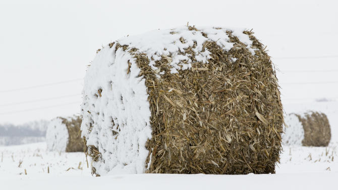 In this Dec. 28, 2012 photo, Bales of corn stalks are covered with a dusting of snow near La Vista, Neb. Despite getting some big storms in December, much of the U.S. is still desperate for relief from the nation's longest dry spell in decades. And experts say it will take an absurd amount of snow to ease the woes of farmers and ranchers. (AP Photo/Nati Harnik)