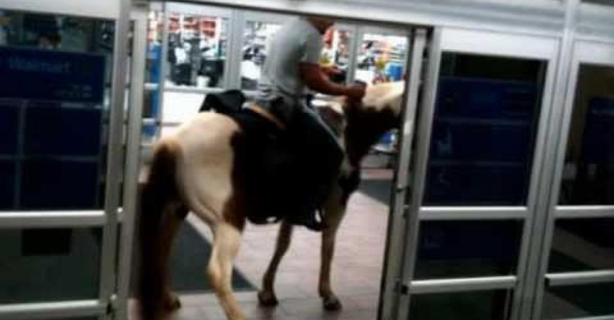 15 Most Ridiculous Things You Will See at Walmart