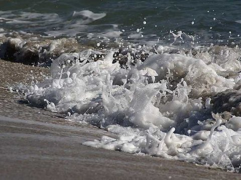 beach sea foam froth wave