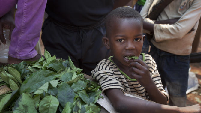A young boy eats some of the leaves that a market-seller, left, is chopping up for sale at the market in the Bimbo neighborhood of the capital Bangui, Central African Republic, Tuesday, Jan. 1, 2013. President Francois Bozize's government is coming under growing threat as rebels vowing to overthrow him rejected appeals from the African Union to hold their advance and try to form a coalition government. (AP Photo/Ben Curtis)
