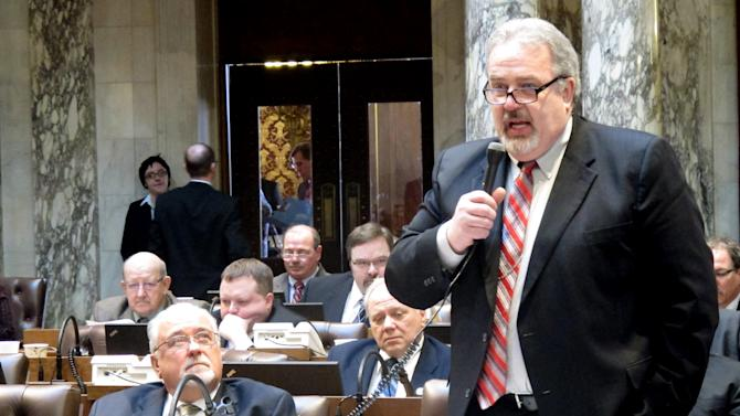 Republican Rep. Mark Honadel, lead sponsor of a bill that would ease the way for a new iron ore mine to open near Lake Superior, speaks in favor of the measure in the Assembly on Thursday, March 7, 2013, in Madison, Wis. Assembly Republicans say the measure would bring jobs to an economically depressed area while Democrats voiced concerns that the pristine environment would be ravaged. (AP Photo/Scott Bauer)