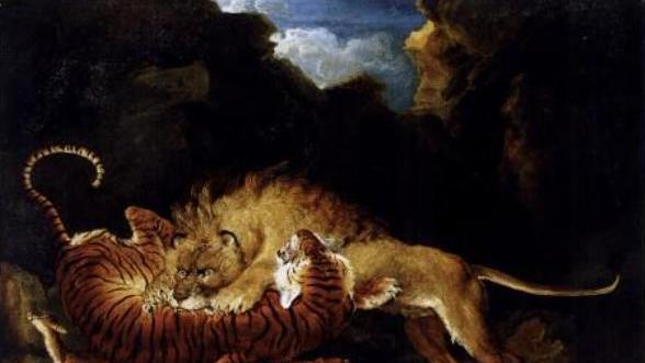 What Would Happen If a Lion Fought a Tiger?