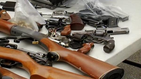 Gun buyback program proposed in Piedmont