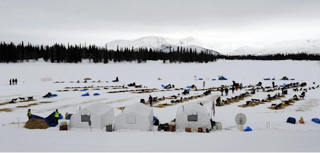 Competitors arrive at the Finger Lake checkpoint in Alaska during the Iditarod Trail Sled Dog Race on Monday, Mar. 4, 2013. (AP Photo/The Anchorage Daily News, Bill Roth)