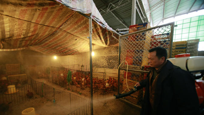 A worker spays disinfectant liquid on to chicken cages at a wholesale market on Thursday, April 4, 2013, in Shanghai, China. In a worrisome sign, a bird flu in China appears to have mutated so that it can spread to other animals, raising the potential for a bigger threat to people, scientists said Wednesday. (AP Photo)