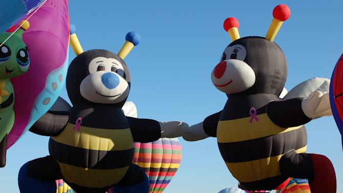 "In this Oct. 8, 2011 photo, ""Joey Little Bee"" and ""Lilly Little Bee"" hot air balloons are shown at the Albuquerque International Balloon Fiesta. The 41st annual event is set to begin Saturday and is expected to draw hundreds of thousands of spectators from around the country and the global. (AP Photo/Russell Contreras)"