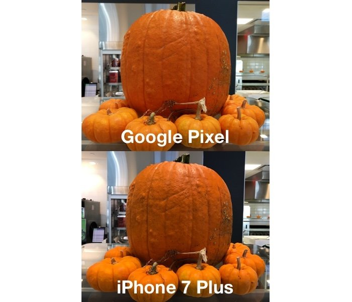 Pictures of a pumpkin taken with the Pixel XL and iPhone 7 Plus