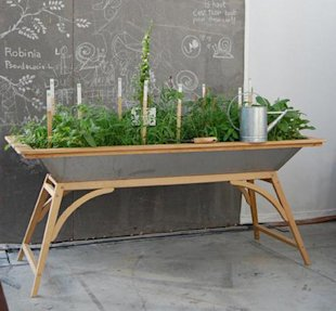 Table-Top Garden