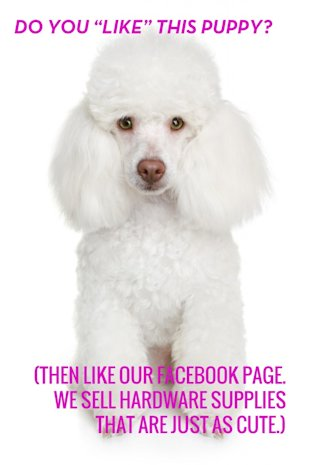 10 Facebook Marketing Don&#x002019;ts Inspired by Copyranter image puppylindsey 682x10243