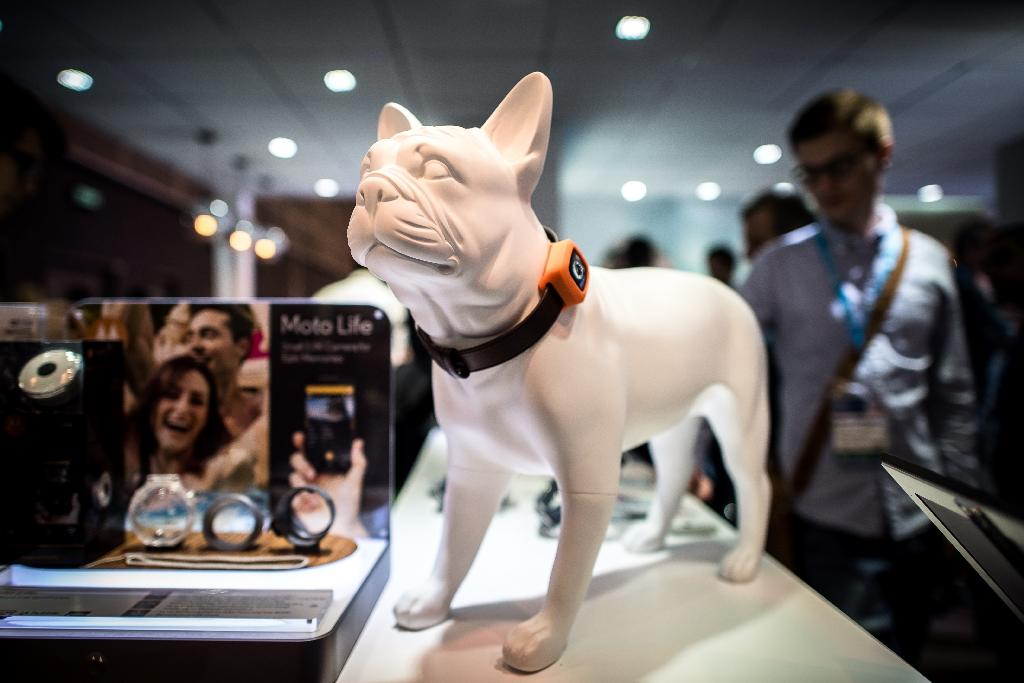Dog 'smartphone', dancing humanoids on show at HK Fair