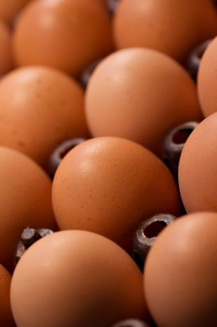 Is an egg yolk as bad as it's cracked up to be?