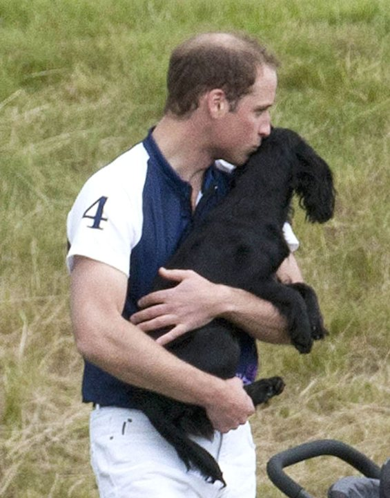Celebrity photos: Prince William spent some quality time with his pet pooch Lupo over the weekend  and couldnt help but give her a kiss. Too. Cute.