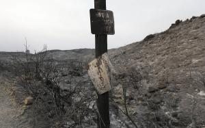 Burned signs are shown on a road near Lower Lake, Calif.,…