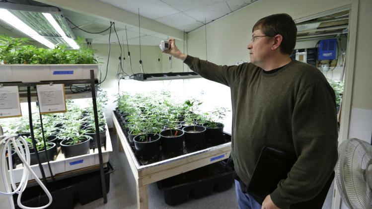 For Wash. government bean-counter, a pot education