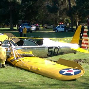 Harrison Ford Hospitalized After Crashing Plane