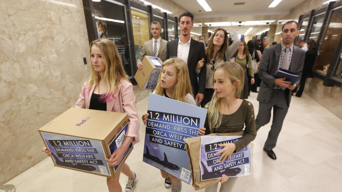Ava Kotler, 12, left, her sister Kirra, 10, right, and Lizzie Gordon, 11, center, helped deliver petitions to for a bill that bans holding killer whales for performance and entertainment purposes, Monday, April 7, 2014, at the Capitol in Sacramento, Calif. Supporters of the bill, AB2140 by Assemblyman Richard Bloom, D-Santa Monica, criticizes the negative aspects of captive orcas at Sea World. The bill will go before the Assembly Water, Parks and Wildlife Committee Tuesday. Actor Eric Balfour, background second from left, and his fiancee, Erin Chiamulon where at the Capitol to support the measure.(AP Photo/Rich Pedroncelli)