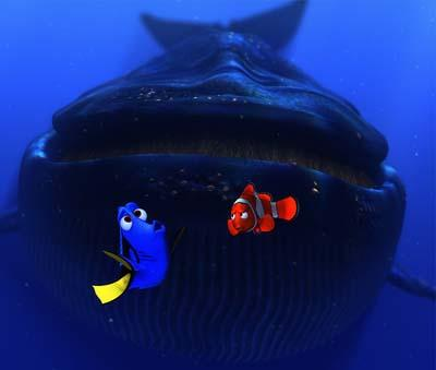 Marlin and Dory meet a blue whale in Disney and Pixar's Finding Nemo