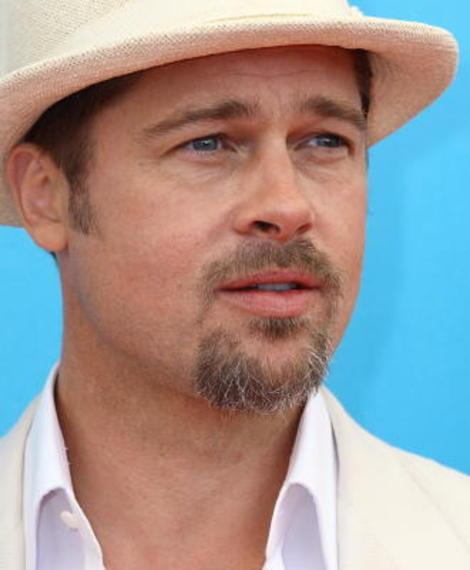 Brad Pitt Donates $100K to Gay Marriage Cause: His Other Big Charitable Causes