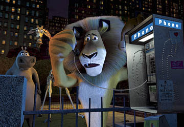 Alex the Lion (voice of Ben Stiller ) discovers he has a language barrier when he tries to call the police to report a missing zebra, as his zoomates Gloria the Hippo (voice of Jada Pinkett-Smith ) and Melman the Giraffe (voice of David Schwimmer ) look on in Dreamworks' Madagascar