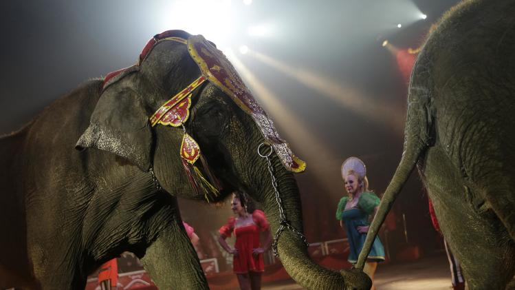 Circus artistes perform with elephants during a show at the Atayde Hermanos Circus in Mexico City