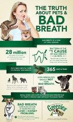 Kiss Bad Pet Breath Goodbye for Good